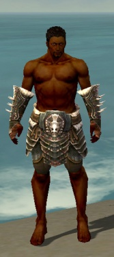 Warrior Norn Armor M gray arms legs front.jpg