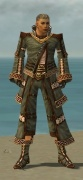 Monk Elite Kurzick Armor M gray front.jpg