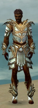 Paragon Primeval Armor M dyed front.jpg
