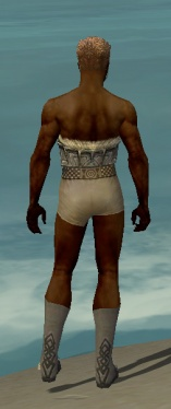 Dervish Norn Armor M gray chest feet back.jpg