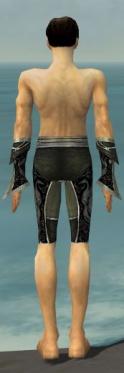 Elementalist Shing Jea Armor M gray arms legs back.jpg