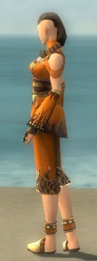 Monk Deldrimor Armor F dyed side.jpg