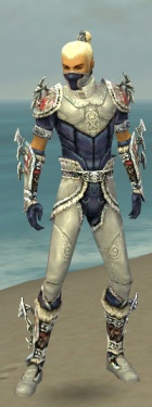 Assassin Norn Armor M dyed front.jpg