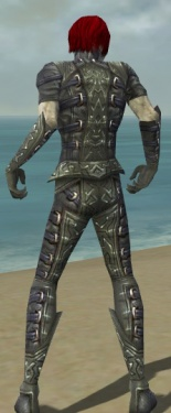 Necromancer Ascalon Armor M gray back.jpg