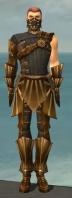 Ranger Sunspear Armor M gray front.jpg
