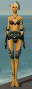 Assassin Imperial Armor F gray arms legs front.jpg