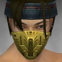 Assassin Imperial Armor M dyed head front.jpg