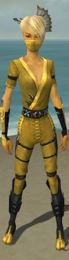 Assassin Shing Jea Armor F dyed front.jpg