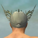 Dwayna's Regalia M head back.jpg
