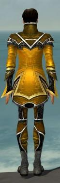 Elementalist Shing Jea Armor M dyed back.jpg