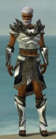 Paragon Obsidian Armor M gray front.jpg