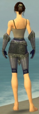 Warrior Platemail Armor F gray arms legs back.jpg