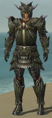 Warrior Wyvern Armor M gray front.jpg