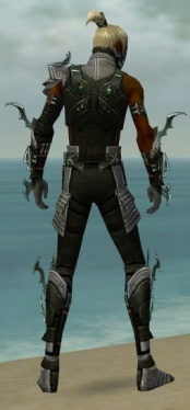 Assassin Elite Luxon Armor M gray back.jpg
