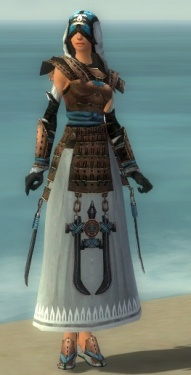 Dervish Monument Armor F dyed front.jpg