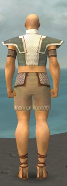 Monk Krytan Armor M gray chest feet back.jpg