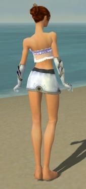 Elementalist Ascalon Armor F gray arms legs back.jpg