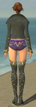 Mesmer Krytan Armor F gray chest feet back.jpg