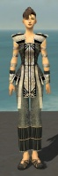 Monk Elite Sunspear Armor F gray front.jpg