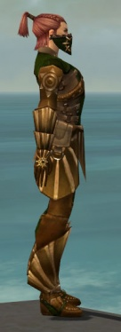 Ranger Sunspear Armor M dyed side.jpg