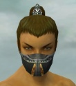 Assassin Exotic Armor M gray head front.jpg