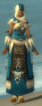 Dervish Norn Armor F dyed front.jpg