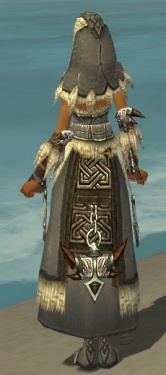 Dervish Norn Armor F gray back.jpg