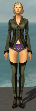 Mesmer Istani Armor F gray chest feet front.jpg