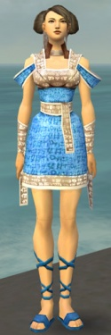 Monk Woven Armor F dyed front.jpg