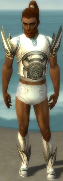 Paragon Asuran Armor M gray chest feet front.jpg