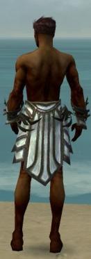 Paragon Primeval Armor M gray arms legs back.jpg