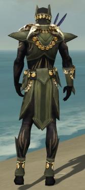 Ritualist Elite Kurzick Armor M gray back.jpg