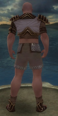 Monk Elite Canthan Armor M gray chest feet back.jpg