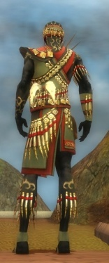 Ritualist Elite Canthan Armor M gray back.jpg