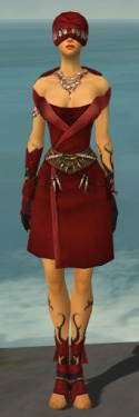 Ritualist Shing Jea Armor F dyed front.jpg