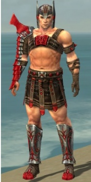 Warrior Elite Gladiator Armor M dyed front.jpg