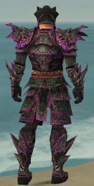 Warrior Elite Luxon Armor M dyed back.jpg