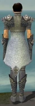 Elementalist Stoneforged Armor M gray back.jpg