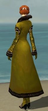 Mesmer Norn Armor F dyed back.jpg