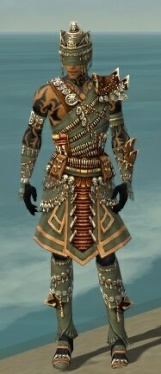 Ritualist Elite Imperial Armor M gray front.jpg