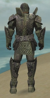 Warrior Elite Platemail Armor M gray back.jpg