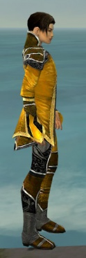Elementalist Shing Jea Armor M dyed side.jpg