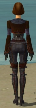 Mesmer Elite Rogue Armor F dyed back.jpg
