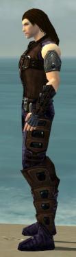 Ranger Obsidian Armor M dyed side.jpg