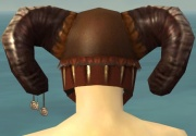 Ritualist Norn Armor M dyed head back.jpg