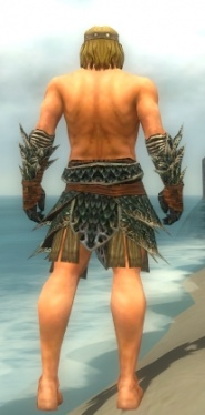 Warrior Luxon Armor M gray arms legs back.jpg