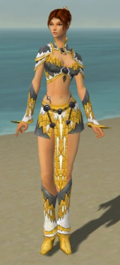 Elementalist Iceforged Armor F dyed front.jpg