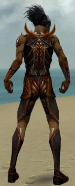 Necromancer Istani Armor M dyed back.jpg