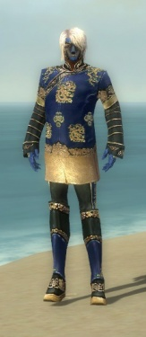 Mesmer Elite Canthan Armor M dyed front.jpg