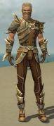 Ranger Asuran Armor M gray front.jpg